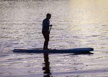 Paddle Boarders. Silhouette images of Paddle Boarders on River Tyne, at Newburn, Newcastle upon Tyne, England, UK. At sunset stock photography