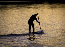 Paddle Boarders. Silhouette images of Paddle Boarders on River Tyne, at Newburn, Newcastle upon Tyne, England, UK. At sunset stock image