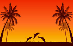 Silhouette jumping dolphin and palm tree in flat icon design with sunset sky background. Silhouette jumping dolphin and palm tree in flat icon design with sunset Stock Photography