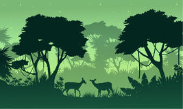 Silhouette of jungle with deer beauty landscape Royalty Free Stock Images