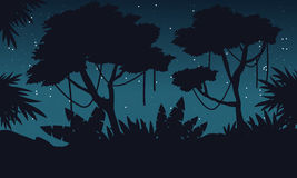Silhouette jungle at night with big tree landscape Royalty Free Stock Images