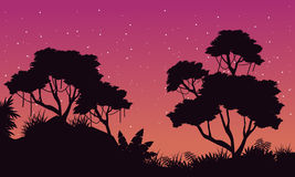 Silhouette of jungle at night landscape Royalty Free Stock Photo