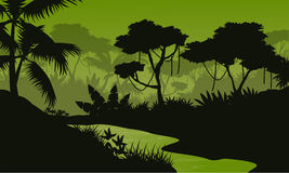 Silhouette of jungle with river landscape Royalty Free Stock Image