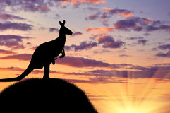 Silhouette of a kangaroo with a baby Stock Photo