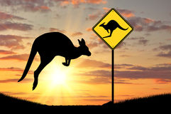 Silhouette of a kangaroo with a baby Royalty Free Stock Photography