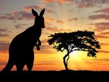 Silhouette of a kangaroo Stock Image