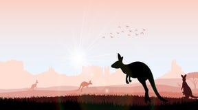 Silhouette kangaroo in the evening Stock Photos