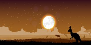 Silhouette a kangaroo the feeding in the bright dusk Royalty Free Stock Image