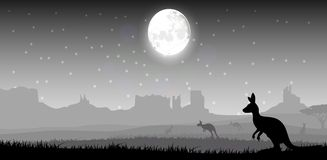 Silhouette a kangaroo the feeding in the bright night Royalty Free Stock Image