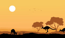 Silhouette kangaroo in the hill landscape Royalty Free Stock Image