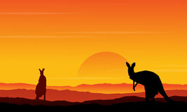 Silhouette of kangaroo on the hill scenery Royalty Free Stock Photos