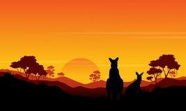 Silhouette of kangaroo st sunset scenery Stock Images