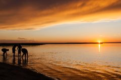 Silhouette of Kids at Beach Sunset Stock Images