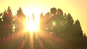 Silhouette of kids running at sunset. Silhouette of happy kids - big sister and little brother, running together at sunset, slow motion stock footage