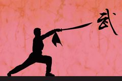 Silhouette of kongfu Royalty Free Stock Photos