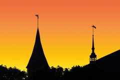 Silhouette Konigsberg Cathedral at sunset. Kaliningrad, Russia Royalty Free Stock Image