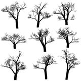silhouette l'arbre illustration stock