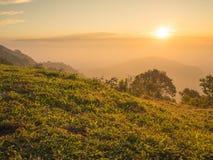 Silhouette landscape mountain Stock Photos