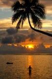 Silhouette of leaning palm tree and a woman at sunrise on Taveuni Island, Fiji stock photo