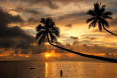 Silhouette of leaning palm trees and a woman at sunrise on Taveu Royalty Free Stock Image
