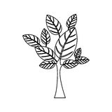 Silhouette with leaves and trunk Royalty Free Stock Photos