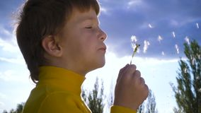Silhouette of little boy blowing up the dandelion stock footage