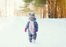 Free Silhouette Little Child Walking In Forest On A Winter Royalty Free Stock Image - 62114406