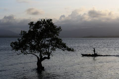 Silhouette of a lonely tree and a fisheman. Silhouette of a lonely tree in the ocean and a fisherman on a boat in south-east Asia Royalty Free Stock Photo