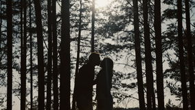 Silhouette of a loving couple is kissing in the park at sunset stock video footage