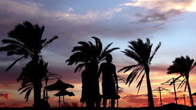 Silhouette Of A Loving Couple Under the Palm At Sunset Embrace and Kiss. Background, have fun stock video