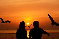 Silhouette of male & female (couple) feeding birds in twilight Royalty Free Stock Photos