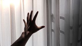 Silhouette of a male hand reaching out to the white curtain with morning sunlight effect.  royalty free stock image