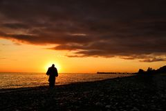 Silhouette of a man on the beach royalty free stock image