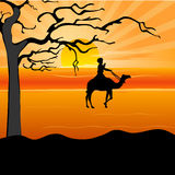 Silhouette of a man on camel Royalty Free Stock Images