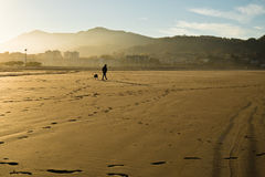 Silhouette of man and dog walking on a sandy beach by atlantic ocean stock photos