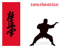 Silhouette of the man of engaged karate . Stock Images