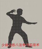 Silhouette of the man of engaged Kung fu. On a gray background Royalty Free Stock Image