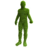 Silhouette of a man with green leaves Royalty Free Stock Image
