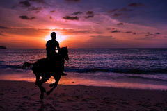 Silhouette man horse riding Stock Photography