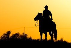Silhouette of a man on a horse at sunset.  Royalty Free Stock Image