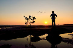 Silhouette of Man looking to the sun near the beach Stock Photography