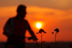 Silhouette of a man on muontain-bike Royalty Free Stock Photography