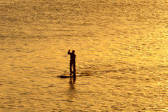 Silhouette of man paddleboarding Royalty Free Stock Images