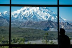 Male Silhouette stares out the large picture window at Denali National Park on a clear sunny day. Silhouette of a man person looking out a window pane of Denali Stock Image