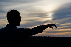 Silhouette of a man pointing Royalty Free Stock Photo