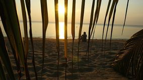 Silhouette of alone man rests sitting on the beach against the backdrop of the sea and sunset, view through the branch. Silhouette of man rests sitting on the stock video footage