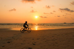 Silhouette of a man rides a bike at sunset. The men Exercise by Royalty Free Stock Image