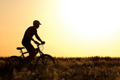 Silhouette of a Man riding a bicycle in the field Royalty Free Stock Images