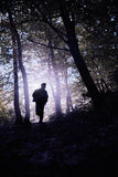Silhouette of a man running in a forest Stock Photos