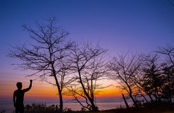 Silhouette man show his hand up in the air with dead tree. At sunset beach Royalty Free Stock Photography